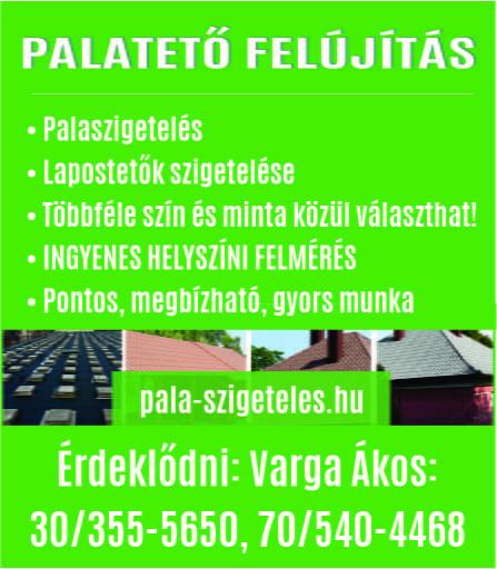 Palatech
