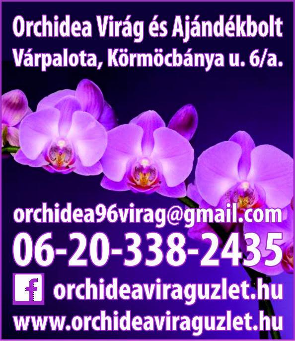 Orchidea Virág Ajándék  Üzlet