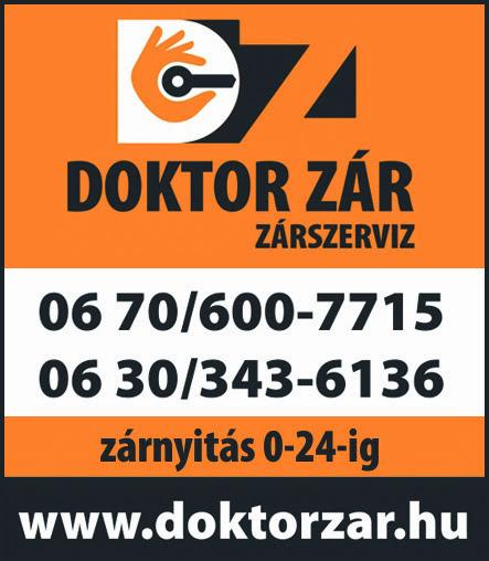 Doktor Zár, Zárszerviz