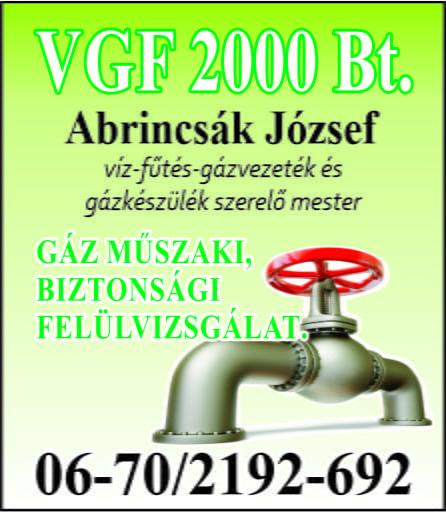 Vgf.  2000 Bt.